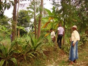 CongoBukavu2012339_zps8a0537f2