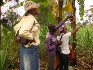 CongoBukavu2012346_zps711cc697